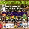 XIII Marcha BTT «Ruta del Torto» (2017)